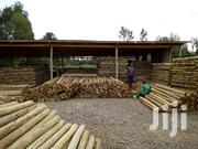 Best CCA Treated Poles For  Fencing  In Kenya | Building Materials for sale in Laikipia, Nanyuki