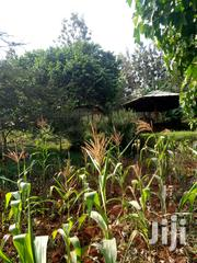 2.25 Acres Touching Tarmac in Redhill Limuru Near Bustani Gardens | Land & Plots For Sale for sale in Kiambu, Ngecha Tigoni