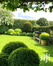 Landscaping Design Services | Landscaping & Gardening Services for sale in Nairobi, Kileleshwa