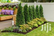 Evannos Landscaping Services | Landscaping & Gardening Services for sale in Nairobi, Kilimani