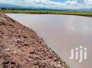 We Construct Fish Ponds And Dams | Building & Trades Services for sale in Meru, Akirang'Ondu