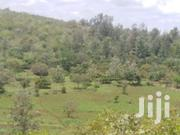 6 Acres For Sale At Maragua   Land & Plots For Sale for sale in Murang'a, Makuyu