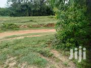 Low Cost 1/4 Acre On Sale At Kalundu Area Kitui County | Land & Plots For Sale for sale in Kitui, Kyangwithya West