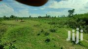 2acre Land On Sale In Kabuoch | Land & Plots For Sale for sale in Migori, Kachien'G A