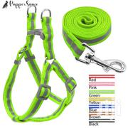 Dog Leash, Leashes, Dog Collar, Dog Bracelet | Pet's Accessories for sale in Nakuru, Elementaita