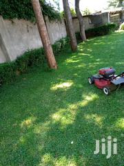 Landscaping And Grass Cutting | Landscaping & Gardening Services for sale in Nakuru, Menengai West