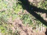 2acres in Mecca | Land & Plots For Sale for sale in Embu, Mbeti North