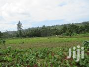 3.5 Acres Prime Land for Sale in Kabocha/Ruku/Wangige | Land & Plots For Sale for sale in Kiambu, Ngecha Tigoni