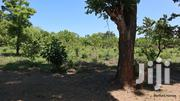 Quarter Acre Piece of Land on Sale in a Controlled Development | Land & Plots For Sale for sale in Kilifi, Mtwapa