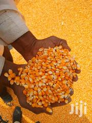 Yellow Corns Seed For Silage | Feeds, Supplements & Seeds for sale in Nairobi, Nairobi West