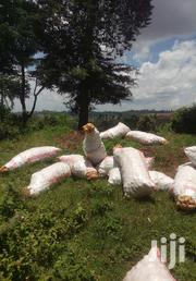 50 Kg Bag Of Potatoes | Feeds, Supplements & Seeds for sale in Nakuru, Molo