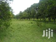 One Acre Piece of Land on Along Malindi Road Mtwapa Near the Mall | Land & Plots For Sale for sale in Kilifi, Mtwapa