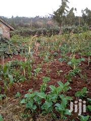100 By 100 Plot Fryover/ Ihindu Area Off Nairobi/ Nakuru | Land & Plots For Sale for sale in Nakuru, Naivasha East
