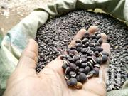 Njahe For Sale | Feeds, Supplements & Seeds for sale in Nairobi, Makongeni