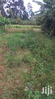 Quarter of an Acre Plot on Sale at Tinganga | Land & Plots For Sale for sale in Kiambu, Ting'Ang'A