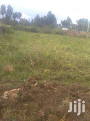 1/4 An Acre Piece Of Land . | Land & Plots For Sale for sale in Bungoma, Bokoli