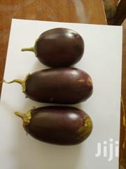 Eggplant Fruits | Feeds, Supplements & Seeds for sale in Kiambu, Thika