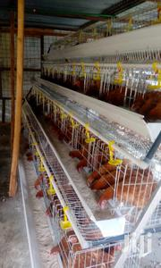 Chicken Cages For 128 Birds | Farm Machinery & Equipment for sale in Nairobi, Roysambu