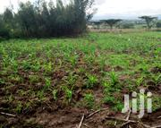 Five Acres | Land & Plots For Sale for sale in Nyandarua, Kaimbaga