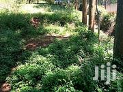 1/2 Acre Land On Sale   Land & Plots For Sale for sale in Nyeri, Kamakwa/Mukaro