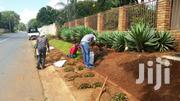 Reliable Gardener Or Landscaper | Landscaping & Gardening Services for sale in Nairobi, Nairobi Central