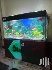 3ft Aquarium | Fish for sale in Nairobi, Nairobi Central