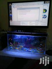 3ft TV Stand Aquarium. | Fish for sale in Nairobi, Nairobi Central