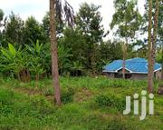 1\4 Of An Acre For Sale | Land & Plots For Sale for sale in Kajiado, Ongata Rongai