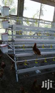 Battery Chicken Cages | Farm Machinery & Equipment for sale in Nairobi, Kahawa