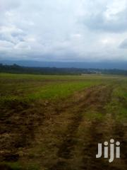 64 Acres Land for Sale in Nyadarua Olkalou | Land & Plots For Sale for sale in Nakuru, Nakuru East