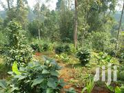 Ngong Kibiko 1 Acre Commercial Land On Quick Sale | Land & Plots For Sale for sale in Kajiado, Ngong
