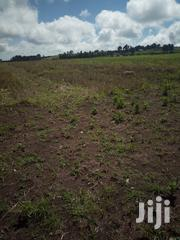 11 Acres In Kisima Timau | Land & Plots For Sale for sale in Meru, Timau