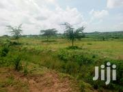 Half An Acre Along Bondo Uyoma Road | Land & Plots For Sale for sale in Siaya, West Sakwa (Bondo)