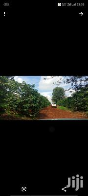 Land for Sale | Land & Plots For Sale for sale in Kiambu, Thika
