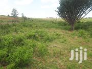 1/4 Piece of Land for Sale in West Gate Kabarak | Land & Plots For Sale for sale in Nakuru, Menengai West