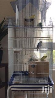 Bird Cage For Budgies Love Birds | Pet's Accessories for sale in Mombasa, Mkomani